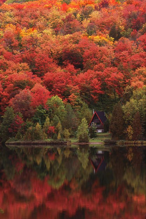 Autumn Lake Quebec Canada